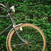 Miks on odavad jalgrattad aina rohkem moodi läinud?